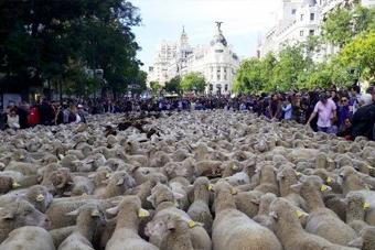 Imagen delegación JA Madrid
